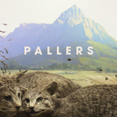 Pallers – The Kiss