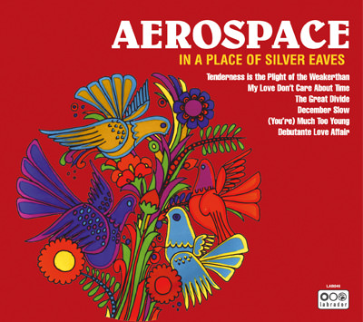 Aerospace – In a Place of Silver Eaves